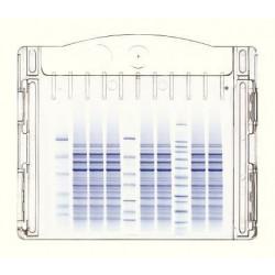 Nusep - Ng21-010 - Precst Igel10%tris Glycne Pk10 (pack Of 10)
