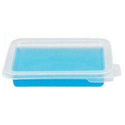 Biotix - 731-103 - STAINING TRAY W/LID PP CS20 (Case of 20)
