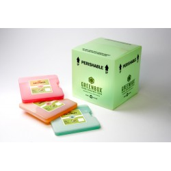 Sonoco ThermoSafe - 09UR1 - GREENBOX 9 VIP 24HR (2-8C) EA (Each)