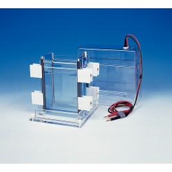 C B S Scientific - DSG-200-02 - DUAL SLAB GEL KIT 220MM HT. (Each)