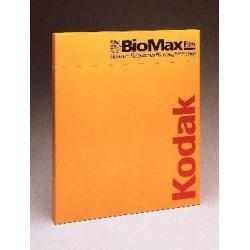 Carestream Health - 8142358-EACH - BIOMAX MS SREEN W/O FOAM 13X18 (Each)