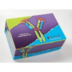 Rockland Immunochemical Proteomics