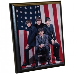 Steiner Sports - BEATPLU008001 - The Beatles American Flag Group Shot 8x10 Plaque