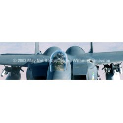 ClearVue Graphics - AVA-012-16-54 - Window Graphic - 16x54 Strike Eagle Canopy