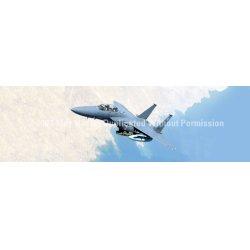 ClearVue Graphics - AVA-015-20-65 - Window Graphic - 20x65 Strike Eagle