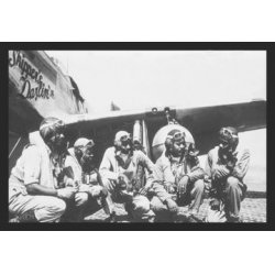 Buyenlarge - 01571-3P2030 - Fliers of a P-51 Mustang Group 20x30 poster