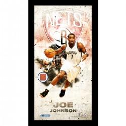 Steiner Sports - JOHNPHA010000 - Joe Johnson Brooklyn Nets Player Profile Framed 10x20 Photo Collage w Game Used Basketball