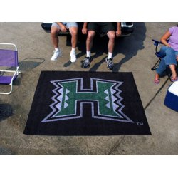 Fanmats - 843 - University of Hawaii Tailgater Rug 5x6