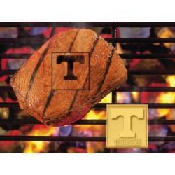 Fanmats - 10120 - University of Tennessee Fan Brands