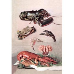 Buyenlarge - 07901-0CG28 - Shellfish 28x42 Giclee on Canvas