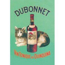 Buyenlarge - 01619-1P2030 - Dubonnet Vin Tonique au Quinquina 20x30 poster