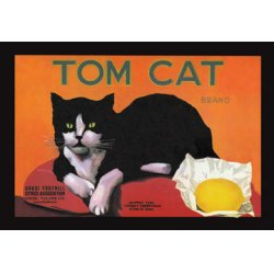 Buyenlarge - 01613-2P2030 - Tom Cat Brand 20x30 poster