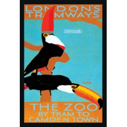 Buyenlarge - 01490-3P2030 - The London Zoo: South American Toucans 20x30 poster