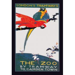 Buyenlarge - 01489-XP2030 - The London Zoo: The Macaw 20x30 poster