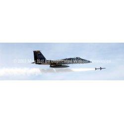 ClearVue Graphics - AVA-006-16-54 - Window Graphic - 16x54 F-15 Eagle