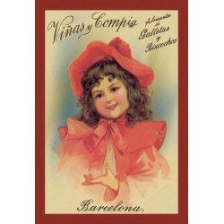 Buyenlarge - 01605-1P2030 - Vinas y Compia 20x30 poster