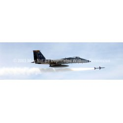 ClearVue Graphics - AVA-006-20-65 - Window Graphic - 20x65 F-15 Eagle