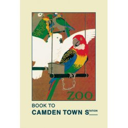 Buyenlarge - 01470-9P2030 - The London Zoo: Exotic Birds 20x30 poster