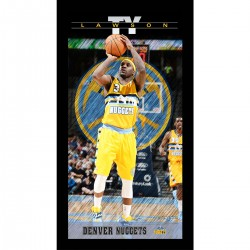 Steiner Sports - LAWSPHA009000 - Ty Lawson Denver Nuggets Player Profile Wall Art 9.5x19 Framed Photo