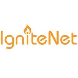 IgniteNet - ICC-POE-24-US - IgniteNet Replacement 24V Passive PoE Injector