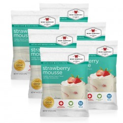 Guardian Survival Gear - FSSM6 - NEW Strawberry Mousse - 6 PACK
