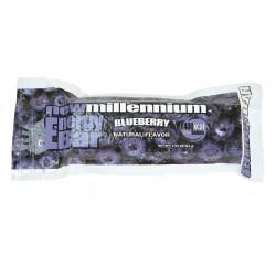 Guardian Survival Gear - FWBL CS - Case of 144 Blueberry Bars
