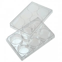 Cole-Parmer - EW-01959-40 - 6-Well Treated Cell Culture Plate with Lid; 100/cs