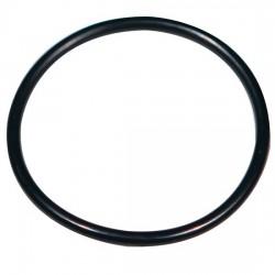 Advantec MFS - 301002 - Advantec 301002 PTFE Gasket for SS Filter Holders, 13 mm