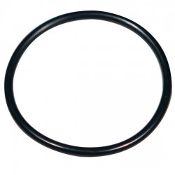 Advantec MFS - 304716 - Advantec 304716 FEP O-Ring for SS Filter Holders, 47 mm
