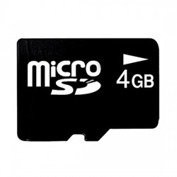 M-System - NSDA-004GL - M-System NSDA-004GL Memory Card for DL8 Web-Based Recorders , 4 GB SD
