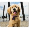 """Fellowes - 5916401 - Fellowes Recycled Mouse Pad - Puppy at Beach - Puppy - 8"""" x 9"""" x 0.1"""" Dimension - Multicolor - Rubber Back - Slip Resistant, Scratch Resistant"""