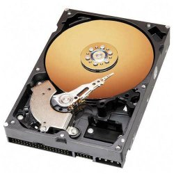 "Western Digital - WD800BB - WD Caviar WD800BB 80 GB 3.5"" Internal Hard Drive - IDE - 7200rpm - 2 MB Buffer - Bulk"