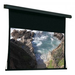 Draper - 101173 - Draper Premier 101173 Electric Projection Screen - 119 - 1:1 - Wall Mount, Ceiling Mount - 84 x 84 - M1300