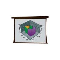 Draper - 101305QL - Draper Premier 101305QL Electrol Projection Screen and Quiet Motor - 58 x 104 - M1300 - 119 Diagonal