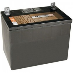 Tripp Lite - 98-121 - Tripp Lite 12V 75 AH Sealed Maintenance-Free Battery for Inverter / Charger - Maintenance-free Lead Acid