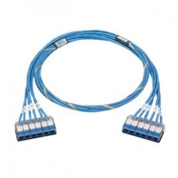 Panduit - QCRBCBCBXX50 - PANDUIT QuickNet Cat.6 UTP Cable - RJ-45 Female Network - RJ-45 Female Network - 50ft - Blue