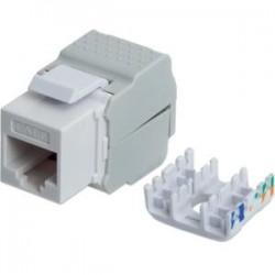 IntelliNet - 167062 - Intellinet Cat6 Keystone Jack - 1 Pack - 1 x RJ-45 Female Network - Nickel Connector - White