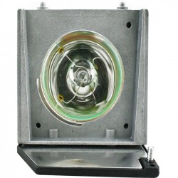 V7 - 310-5513-V7-1N - V7 Replacement Lamp for Acer 310-5513 - 200 W Projector Lamp - 2000 Hour