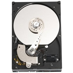 "Western Digital - WD800JD - WD Caviar WD800JD 80 GB 3.5"" Hard Drive - SATA - 7200rpm - 8 MB Buffer - Hot Swappable - 1 Pack - OEM"