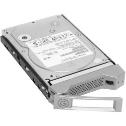HGST (Western Digital) - 0G00061 - G-Technology 0G00061 2 TB Internal Hard Drive - SATA - 7200rpm - Hot Swappable
