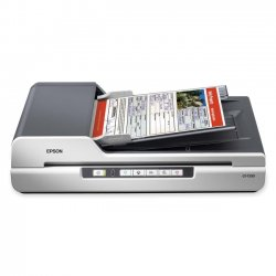 Epson - B11B190011 - Scanner, Document, 8-1/2 in. x 14 in.