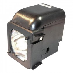 eReplacements - BP96-01653A-ER - Premium Power Products Lamp for Samsung Rear Projection Television - Projection TV Lamp - 2000 Hour