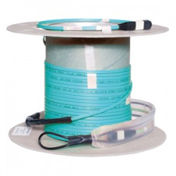 Hubbell - FPCMTP6250 - Hubbell Fiber Optic Cable - Fiber Optic - 164.04 ft - 12 Pack - 1 x MTP Male Network - 1 x MTP Male Network