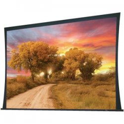 "Draper - 102352L - Draper Access 102352L Electric Projection Screen - 165"" - 16:10 - Ceiling Mount - 87.5"" x 140"" - M1300"