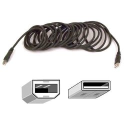 Belkin / Linksys - F3U133B10 - Belkin USB Cable - Type A Male USB - Type B Male USB - 10ft