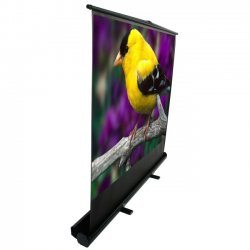 "Elite Screens - F100XWV1 - Elite Screens F100XWV1 ezCinema Plus Portable Floor Set Manual Projection Screen (100"" 4:3 Aspect Ratio) (MaxWhite) - 60"" x 80"" - Matte White - 100"" Diagonal"