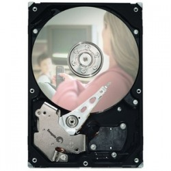"Seagate - ST3160215ACE - Seagate 7200.3 ST3160215ACE 160 GB 3.5"" Internal Hard Drive - IDE - 7200rpm - 2 MB Buffer"