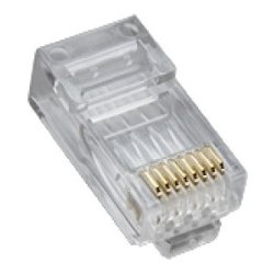 Platinum Tools - 106168J - Platinum Tools Network Connector - 100 Pack - 1 x RJ-45 Male