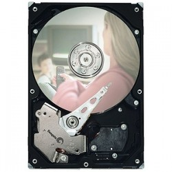 Seagate - ST380215ACE - Seagate DB35 ST380215ACE 80 GB 3.5 Internal Hard Drive - IDE - 7200rpm - 2 MB Buffer