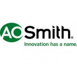 A.O. Smith - 100108941 - Gas Valve, 24V, 4 In
